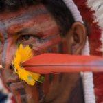 Santa Sé: ensinamentos indígenas essenciais para humanidade