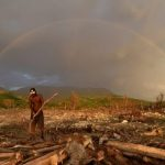 Cardeal Turkson: prevenir catástrofe ambiental no mundo