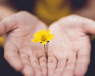 Ter uma vida nova: quem me dera, mas Deus me livre!